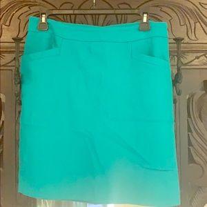 Green Ann Taylor Skirt
